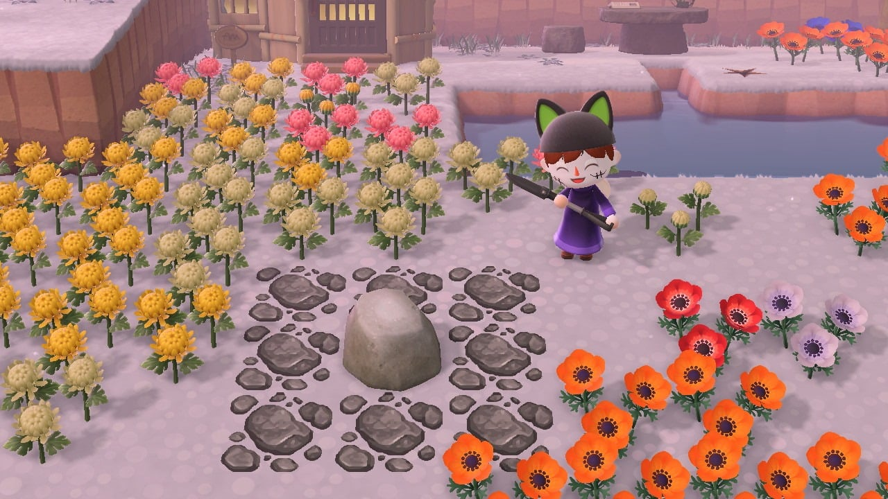 Animal crossing player next to a rock which has no weeds, items or flowers next to the rock
